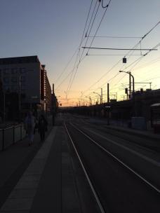 Dresden 9