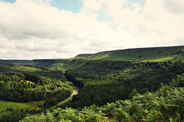 Yorkshire 12