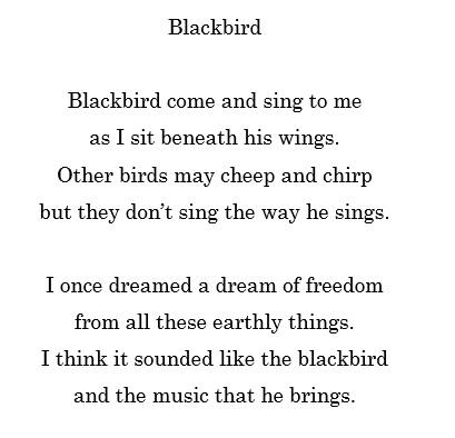 Poetry Corner Poem 16 Blackbird Forever On A Lilo