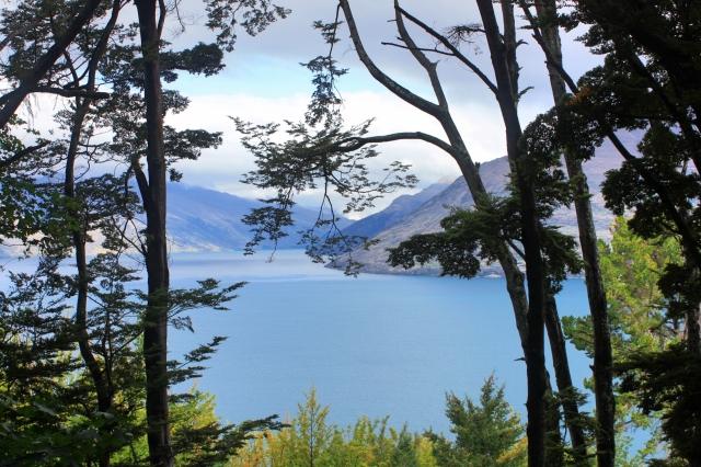 NZ South Island 4